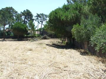 Real estate land, Colares, Sintra