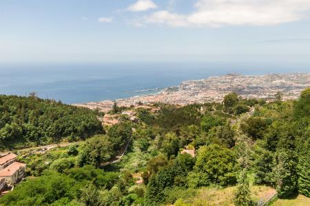 Quinta, Funchal (Santa Maria Maior), Funchal